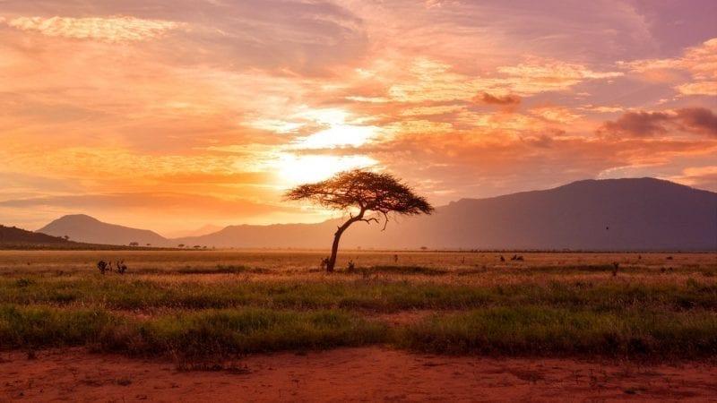 African Spirituality - Jung Platform