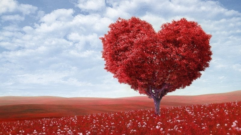 On being in love - Jung Platform