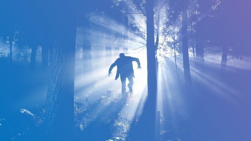 The Frankenstein Prophecies - Jung Platform