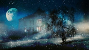 The Nocturnal Therapist: Turning Toward Our Dreams