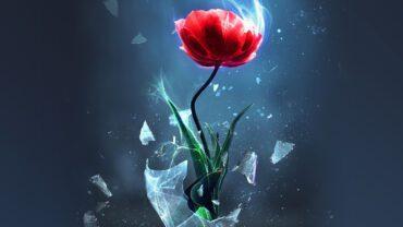 Heartbreak and Its Invitations